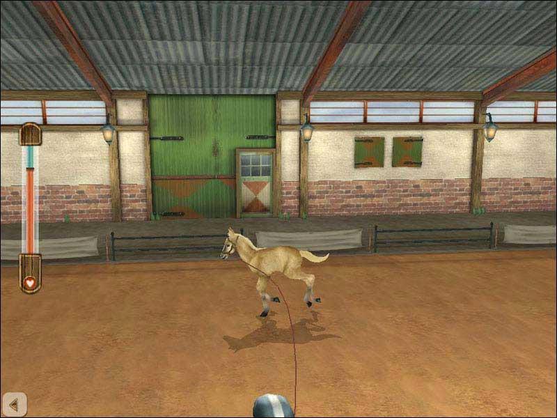 Лошадь-моей-мечты-1