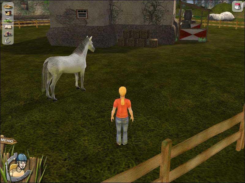 Лошадь-моей-мечты-2