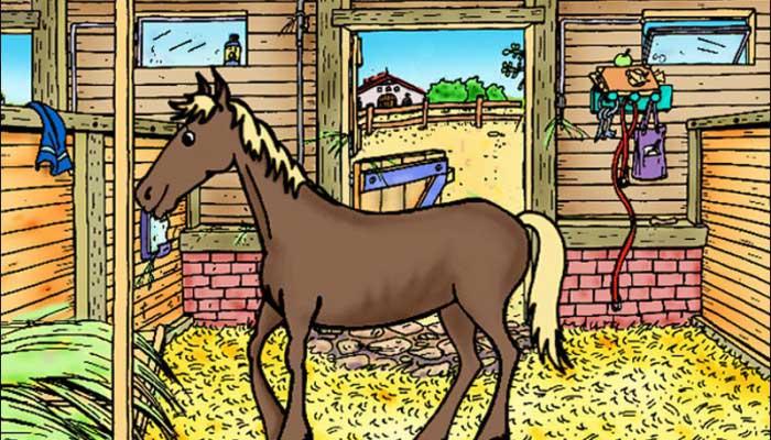 Pferd--Pony-Mein-Pferdehof-3