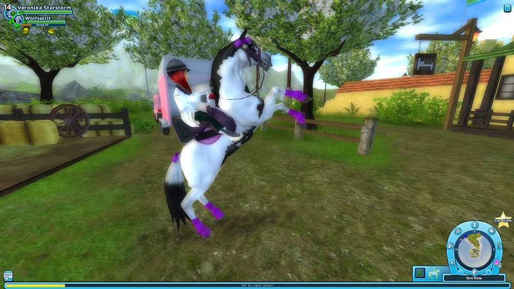 Starstable-Spring-Riders