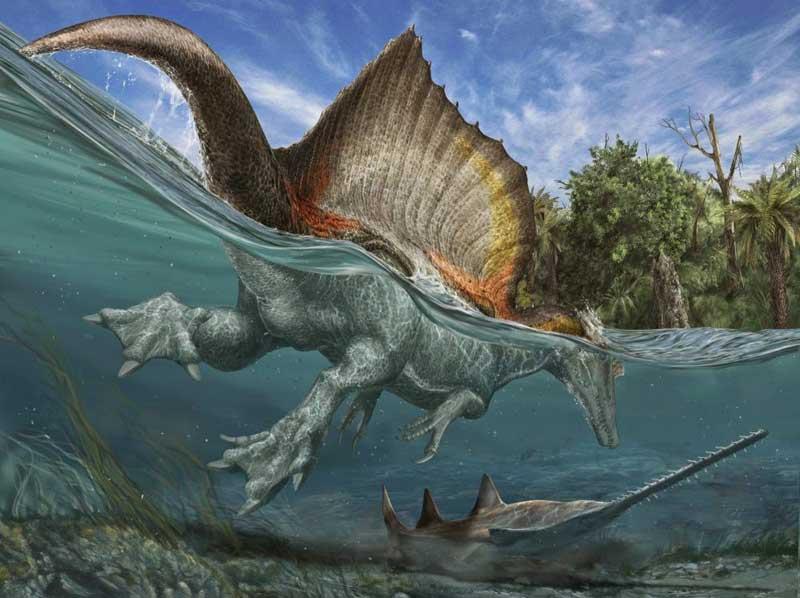 Dinosaur-Battlegrounds-3