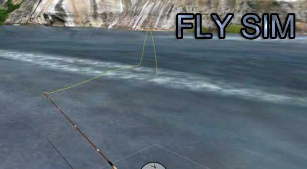 Fly-Sim-0