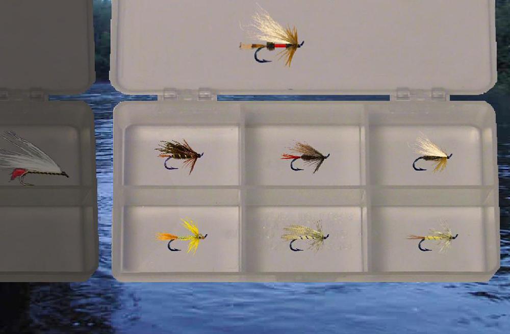 Fly-Sim