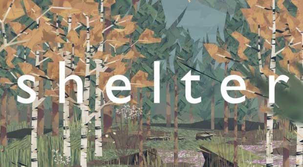 Shelter-0